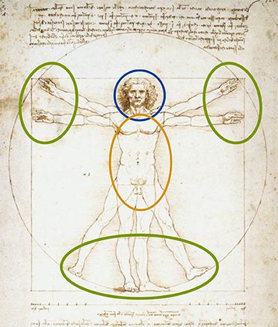 ダ・ヴィンチ人体図